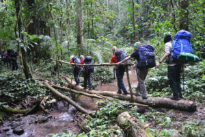 5 Days Trek in Luang Namtha
